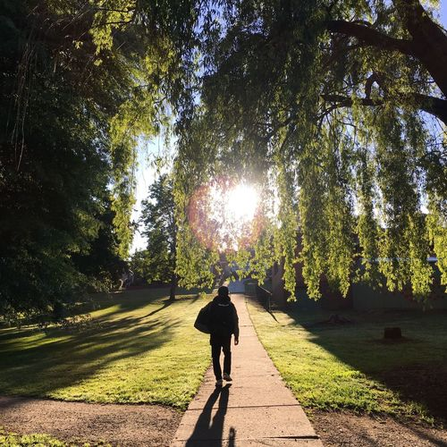 Adventure Buddies Warragul Australia Exploring Hello World Greens Silhouette Trees Bff Stepping Out Light And Shadow Sunshine Good Morning Feel The Journey Original Experiences Future Long Goodbye TCPM