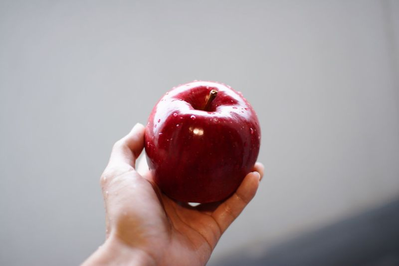 Apple Fruit Freshness Human Hand Human Body Part Food Food And Drink One Person Holding Human Finger Freshness Real People Red Personal Perspective Healthy Eating Apple - Fruit Unrecognizable Person Close-up Lifestyles Indoors  Eaten Day Delicious Beauty Red Second Acts