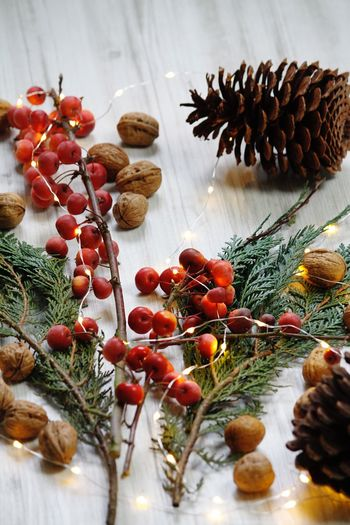 Hello Hamburg Details Eye For Details Lights Decoration Colorful Christmas Is Coming Hello World Click Click 📷📷📷 Taking Pictures Germany🇩🇪 Christmas Time Decoration Christmas Decoration Pine Cone Nuts Still Life Freshness Indoors  Plant Close-up Red Large Group Of Objects