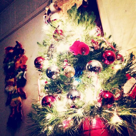 This is my tiny Christmas tree lmao Christmas Tree Merry Christmas ♡ Happy Holidays :) Happy People