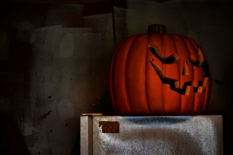 Halloween Is Over Halloween Spooky Pumpkin Mystery Dark Darkness Scrary Spooky Pumpkin Pumpkin Jack O' Lantern Jackolantern Jackolanterns Pumpkin Carving first eyeem photo