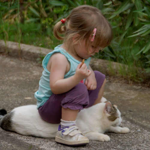 Ellana Cat Fun Girl Children Nikon