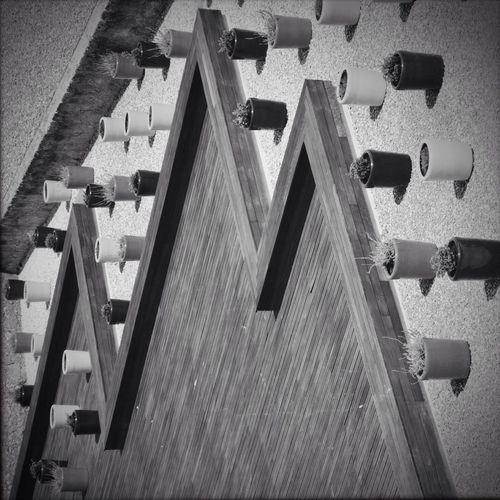 MEM Black&white Monochrome Visual Statements Blackandwhite