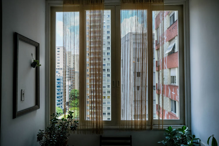 Through the window of my friend's house Window Indoors  Day No People Plant Architecture Building Home Interior Curtain Potted Plant Open Built Structure Safety Sunlight Domestic Room Apartment View To The City Cityscape cityscapes Cityscape Photography São Paulo Sao Paulo - Brazil