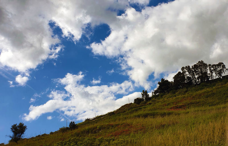 Low angle view of landscape against sky