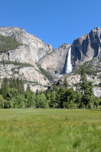 Waterfall Power In Nature Scenics Motion Yosemite Falls Iconic Landscape Daylight Spring Low Angel View Cliff Landscape Meadow Day Sky Outdoors Nature Beauty In Nature Grass Clear Sky Water Freshness