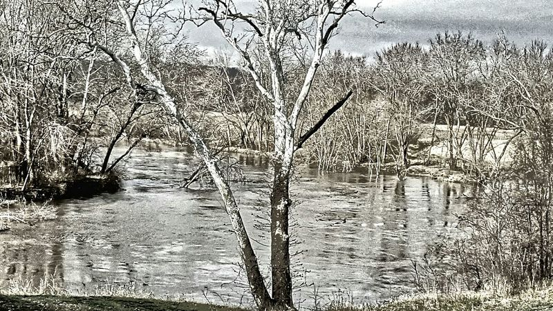 Platte River near Platte City v2 River Dramatic Trees Tree TreePorn Tree_collection  Water_collection HDR Hdr_Collection Riverscape Riversidepark Riverside Photography Look! Protecting Where We Play Hugging A Tree