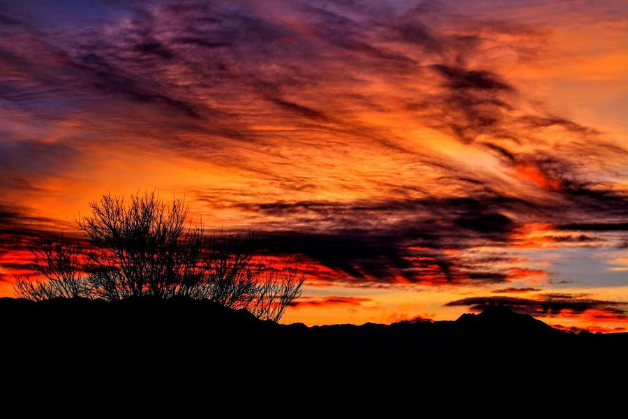 Dramatic Sunrise, SLC, Utah. Sunset Orange Color Dramatic Sky Silhouette Tree Scenics Beauty In Nature Nature Cloud - Sky Landscape Sunlight Sky Multi Colored No People Outdoors Tranquil Scene Accidents And Disasters Tranquility Mountain Rural Scene