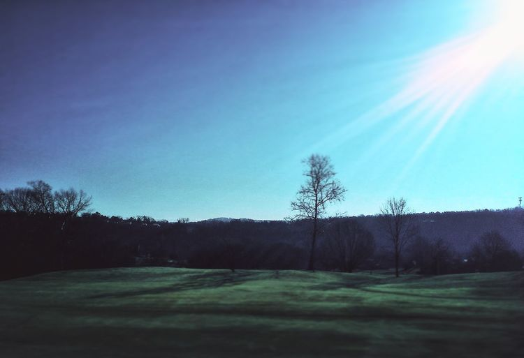 Midwinter Morning on the Golf Course at Pointe Royale The Pointe Ozarks Branson, Missouri Sun Trees Streamzoofamily