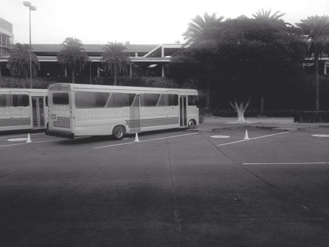 Vintage Black And White Universal Studios  Public Transportation