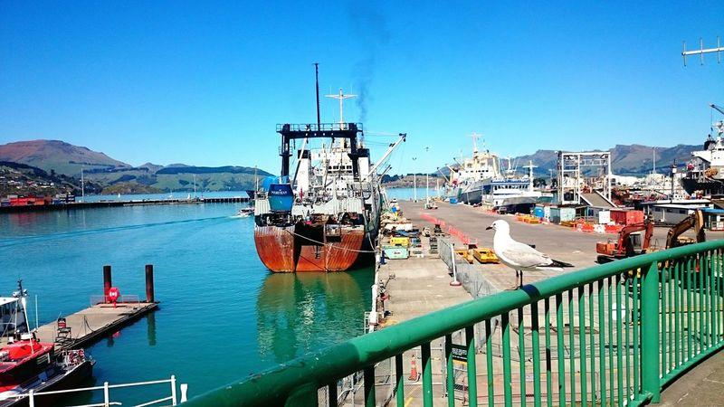 Harbour in Lyttelton ❤ Ships Harbour Going Sailing Enjoying The Sun Relaxing Ship Sea Sunny Traveler New Zealand