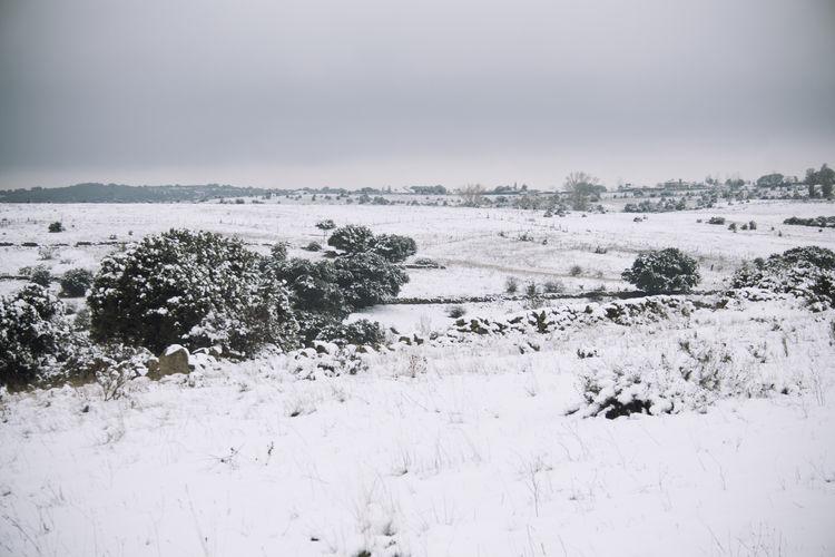 Invierno Landscape Madrid Nieve Pedrezuela Snow Snow Day SPAIN Winter