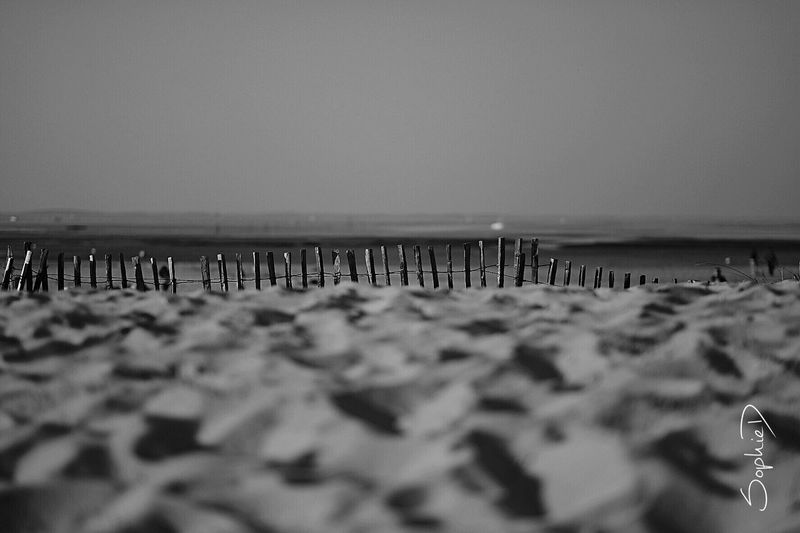 Week-end Beach Selective Focus Sea Nature Water Outdoors Beauty In Nature Photography Saturday Blackandwhite Landscape
