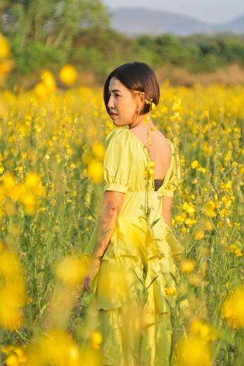 Girl standing on yellow flower field