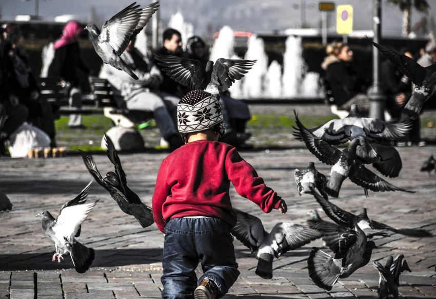 Children Child Izmir Birds Konak Saatkulesi Turkey Türkiye Taking Photos Photography First Eyeem Photo Streetphoto_bw Streetphotography Street Happy Playing Canon Canon60d Canonphotography 60d