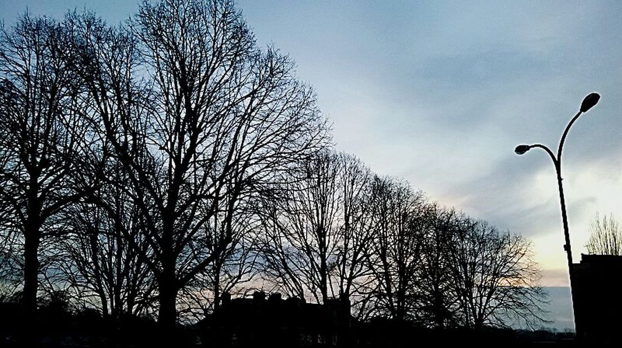 Au coucher du soleil, apparaissent les vrais visages. Ceux des démons..? Taking Photos Threes Paysage Urbain Demons Visages Photographie  Beautiful Nature Arbres Vire Wintertime