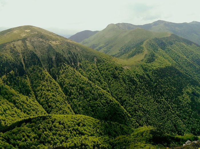 Slovakia Hiking EyeEm Nature Lover Mala Fatra