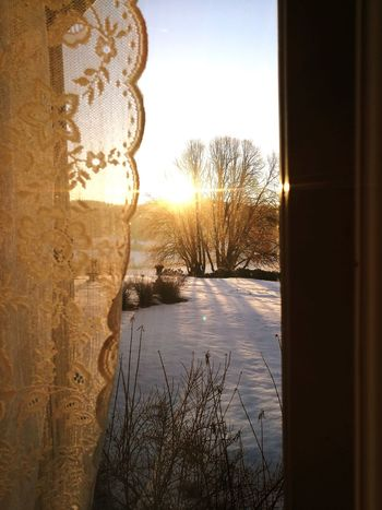 Sunrise Romantic❤ No People Outdoors Indoors  Looking Through Window Window Close-up Nature Sun Sky Tree Beauty In Nature Landscape Loveit Morningtime