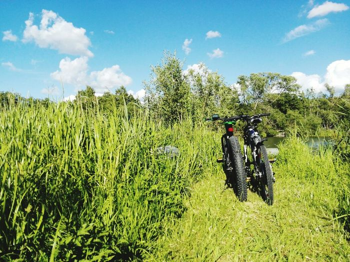 Couple TwoIsBetterThanOne Tranquil Scene Remote No People The Way Forward The Past Country Road Footpath Tranquility Outdoors Nature Non-urban Scene Dirt Road Day Mode Of Transport Wheel Bicycle Tree Transportation Grassy Scenics Surface Level Growth Green Color Branch Close-up