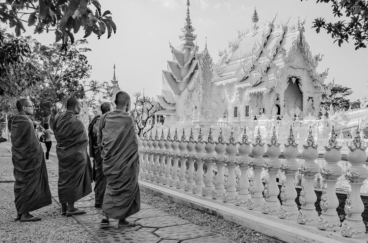 Meditation Architecture Black & White Black And White Blackandwhite Blackandwhite Photography Building Exterior Day Full Length Monks Monks In Temple Nature Outdoors People Place Of Worship Real People Religion Sky Spirituality Temple Tree Whitetemplechiangrai Whitetemple Chang Rai Thailand Connected By Travel EyeEmNewHere The Great Outdoors - 2018 EyeEm Awards