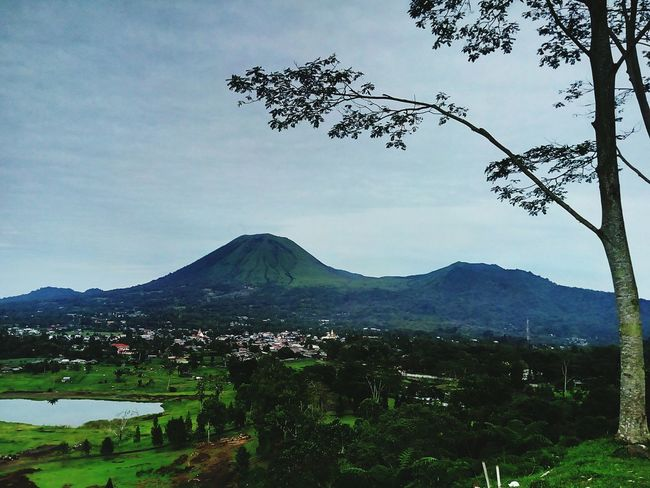 Mountain Volcano Nature Outdoors No People Landscape Beauty In Nature Sky Tree Area Tree Volcanic Landscape Scenics Mount Lokon North Sulawesi - Indonesia INDONESIA