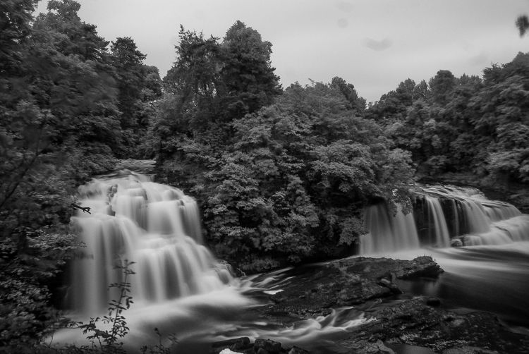 New Lanark Eyeem Scotland  Tree No People Motion Nature Water Statue Beauty In Nature Waterfall Blurred Motion Long Exposure Scenics Sculpture Outdoors Growth Day Sky