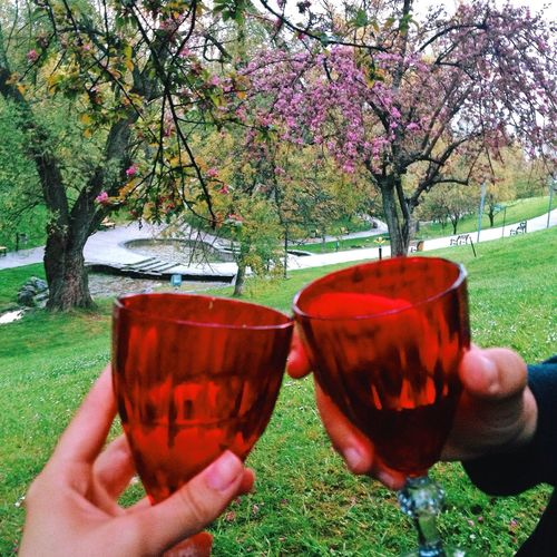 How You Celebrate Holidays Cheers EyeEmBestPics Picnic Walking Around Relaxing Taking Photos Turkey Ankara From Where I Stand Check This Out EyeEm Best Edits The Week Of Eyeem EyeEm Best Shots Travel Photography