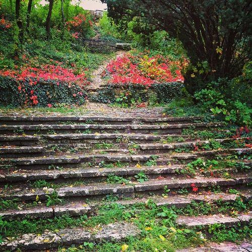 pathway to the secret garden of pleasure Dobrich Park