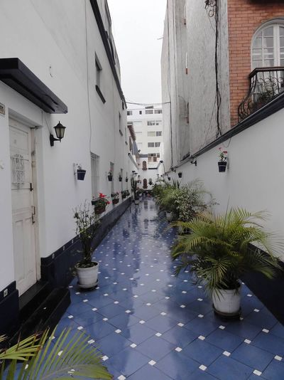 Street Lima Peru