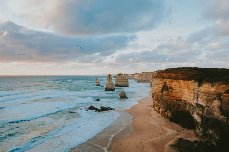 12 Apostles Australia Nikon Animal Animal Themes Beach Beauty In Nature Bird Cloud - Sky Horizon Horizon Over Water Land Nature No People Outdoors Rock Scenics - Nature Sea Sky Tranquil Scene Tranquility Vertebrate Water