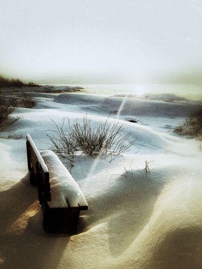 Sand Dune Water