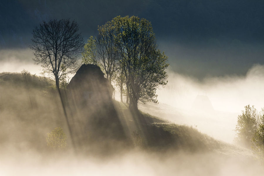 foggy morning in Apuseni Mountains Beauty In Nature Day Fog House Mist Nature No People Outdoors Scenics Shadows Sky Sunlight Sunrise Tranquil Scene Tranquility Tree
