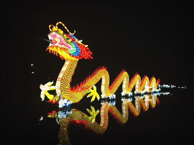 Dragon at the Chinese Light Festival in Utrecht Chinese Lights