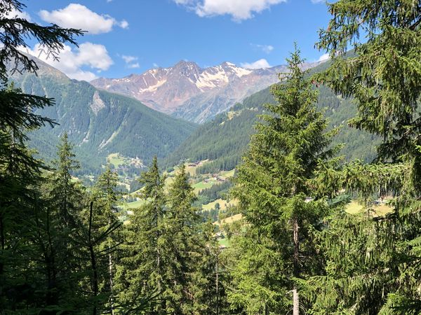 Happy day, dear friends 💐🙋🏻♀️☀️ Alto Adige Ultental Südtirol South Tyrol Italien Italy Italia Plant Growth Beauty In Nature Tree Mountain Tranquility Scenics - Nature Tranquil Scene Green Color Nature Sky Day No People Cloud - Sky Mountain Range Landscape