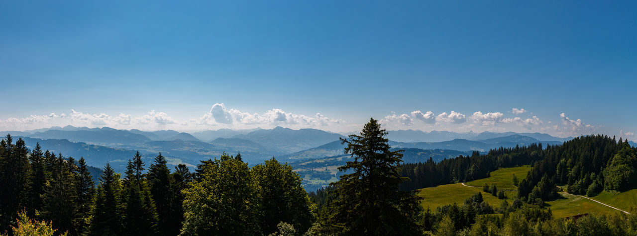 Panoramic view of trees and mountains against blue sky