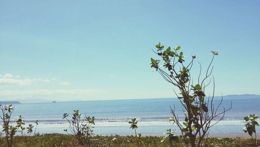 Beach Day Puntarenas