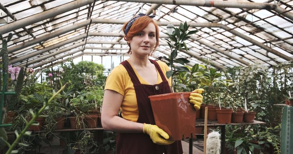 Portrait of smiling woman holding potted plant in greenhouse