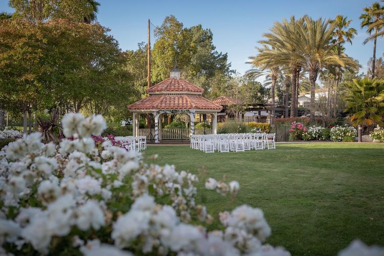 before the ceremony Wedding Wedding Photography Wedding Day Wedding Ceremony Wedding Party Ceremony Venue Flower Tree Flowerbed Front Or Back Yard Sky Plant Architecture Garden Path Formal Garden Stepping Stone Hydrangea Hedge Petal Blooming In Bloom Pollen Botanical Garden
