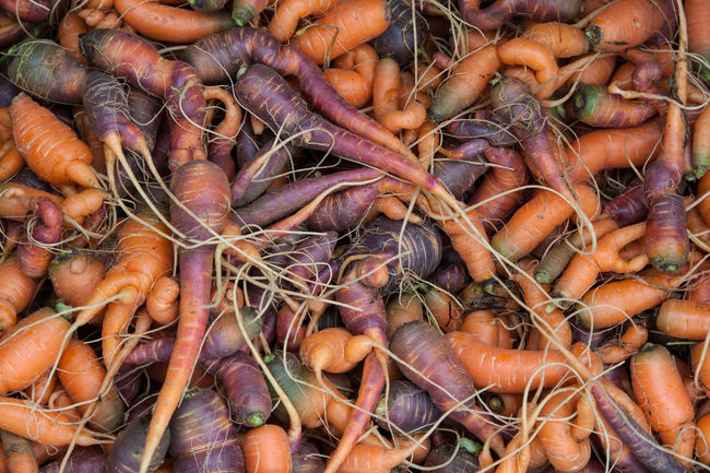 Abundance Carrot Colorful Farmers Market Food Fresh Food Market Stall Multicolored Carrots Organic Raw Food Vegetables