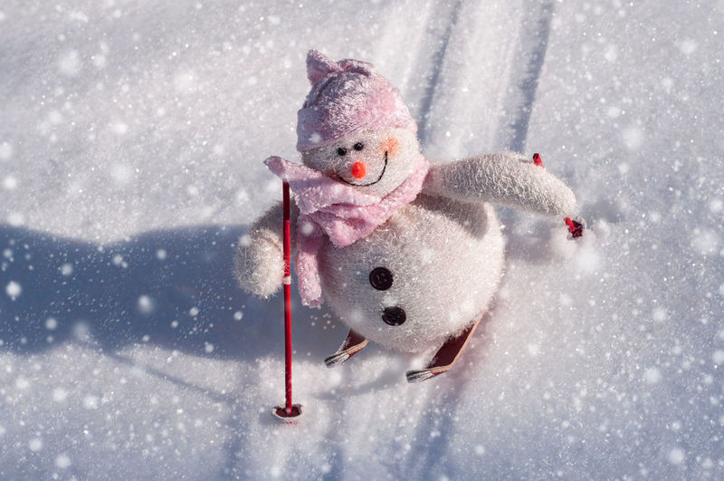 Close-Up Of Snowman Skiing On Fur