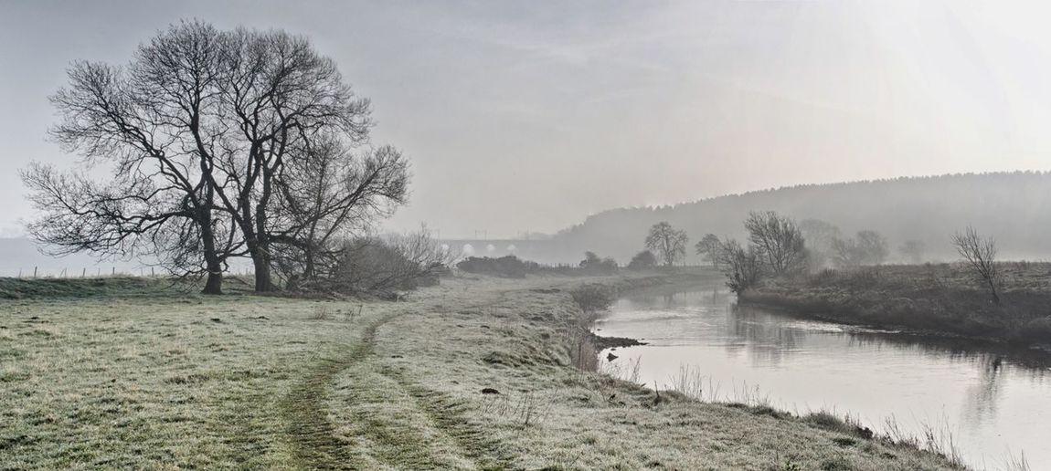 Mist Misty Morning Misty Riverside River View Riverbank Morning Serene Outdoors Serene Tranquil Outdoors