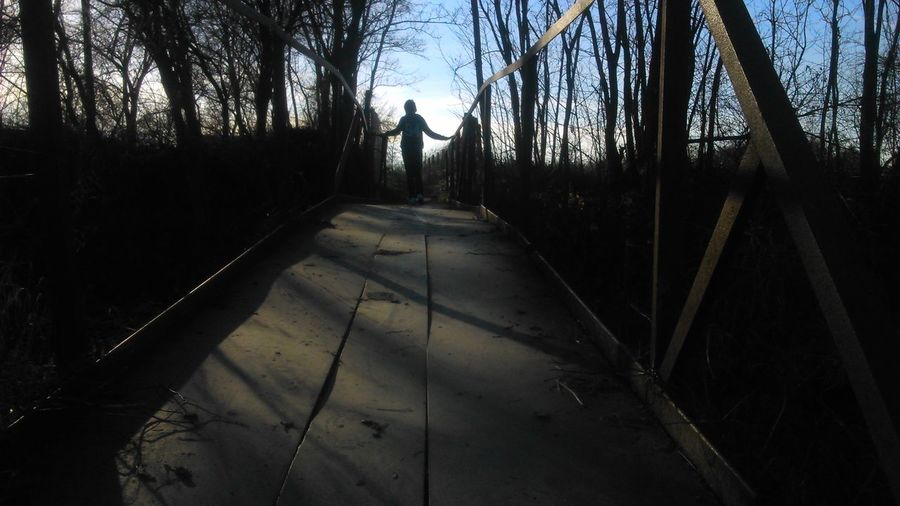 Tree Shadow Sunlight Silhouette Outdoors Sky Nature Romania Bridge - Man Made Structure Bridge