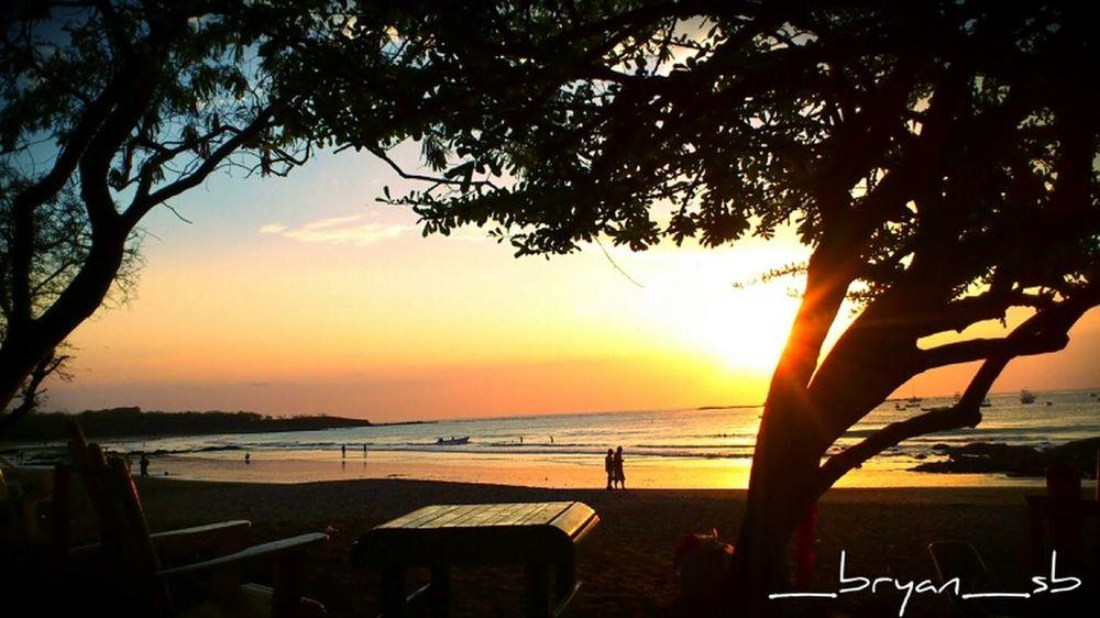 Beach Sun Sunset Orange