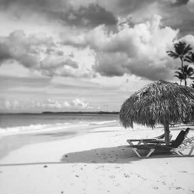 Caribbean Beach Sunny Fun Sunbathing Surf International