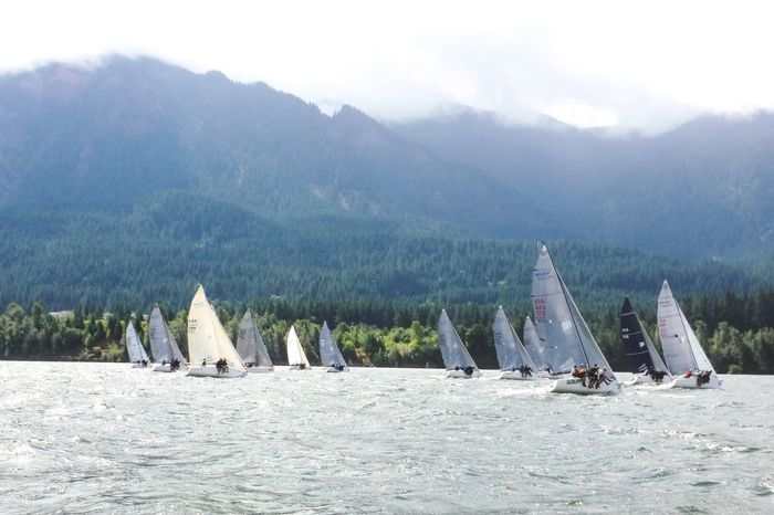River regatta Swift River Summer Breeze Engineless Motion Distant Mountains Summer Fun Pacific Northwest  Protected Area One Design Lake Breeze Regatta Sport Small Sail Boat Weekend Activities Sailing Summer Fun Natural Light Sailboats Liesure Activity Clean Air Mountain Scenics - Nature Nautical Vessel Beauty In Nature Sailboat Water No People Environment Land Outdoors