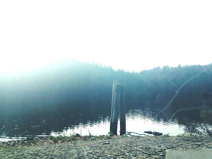 Lake Zoar,