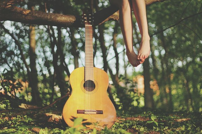 Summer Foot Gitar Flowers Sunset Good Times Nature Beutiful  My Hobby Summer Views Things I Like My Favorite Photo 43 Golden Moments Eyeemphoto TakeoverMusic