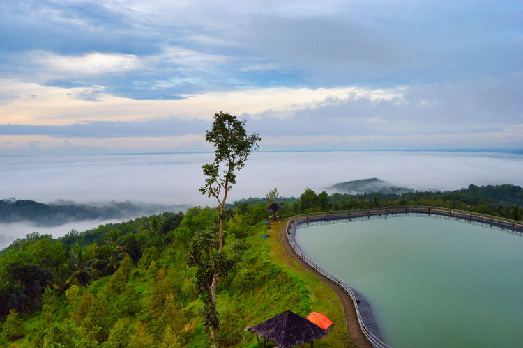 When morning at Embung Nglanggeran, Gunung Kidul, Yogyakarta, Indonesia. Tree Plant Water Cloud - Sky Beauty In Nature Scenics - Nature Sky Tranquil Scene Tranquility Nature Green Color No People Environment Non-urban Scene Lake Day High Angle View Outdoors Landscape EyeEmNewHere EyeEm Best Shots EyeEm Nature Lover Beauty In Nature Nature EyeEm Selects