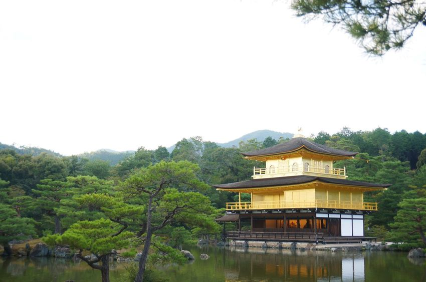 Kinkakuji Kinkakuji Temple Golden Pavilion  Temple Architecture Cultures Tradition Kyoto, Japan Kyoto Japan Gold