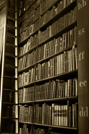 Book Of Kells Dublin City Dublin, Ireland Dublin Historical Building Sepia Photography Sepia_collection Sepia EyeEm Gallery EyeEm Library Library Building Library View Libraries Library Room Book Collections Historical Landmark Tourist Destination Dublin Ireland EyeEmBestPics Books Book Books ♥ Shelving Shelves Of Books